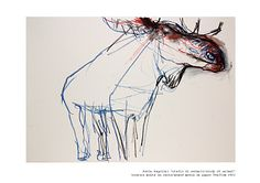 Studio di animali/study of animal by Paola Angelini, a talented artist from Italy