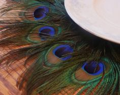 Estera de pluma de pavo real como se ve en el cuatro por Ivyndell