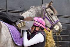 Should You Soak or Steam Horse Hay?