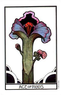 Ace of Rods - Aquarian Tarot - rozamira tarot - Picasa Web Albums
