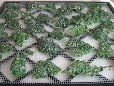 Garlic-Herb Raw Kale Chips (vegan)