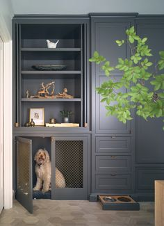 Architect Bill Moore takes a low-slung, one-story house from sad to sensational with some much needed height and plenty of space for entertaining. Interior Desing, Dog Rooms, Dog Houses, House In The Woods, Mudroom, Laundry Room, Small Laundry, Family Room, Decoration