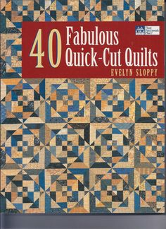 That Patchwork Place:  40 Fabulous Quick-Cut Quilts by Evelyn Sloppy