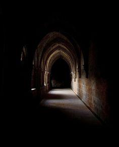immorttalis:  Gothic Cloister gallery by Álvaro German Vilela on Flickr.
