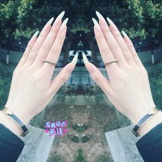 This series deals with many common and very painful conditions, which can spoil the appearance of your nails. SPLIT NAILS What is it about ? Nails are composed of several… Continue Reading → Long Fingernails, Long Nails, Gel Nails At Home, My Nails, Split Nails, Long Natural Nails, Exotic Nails, Claw Nails, Nails Only