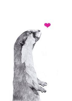 Adorable illustration by Yoshinori Kobayashi Otters Cute, Baby Otters, Otter Tattoo, Ferret Tattoo, Animal Drawings, Art Drawings, Baby Animals, Cute Animals, Otter Love