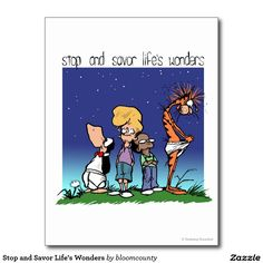 Stop and Savor Life's Wonders Postcard