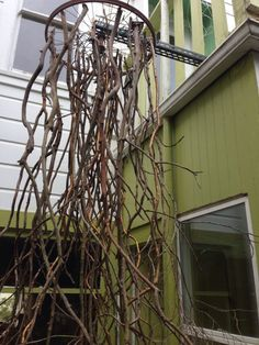 Recycled garden art made from bike rim and branches. I'd paint the branches :) Bicycle tire art | Recyclart
