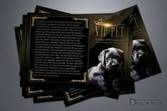 Pet Shipping, Web Design Services, Cattery, Pet Travel, Graphic Design, Pets, Visual Communication