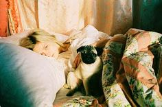 Marie Antoinette (as played by Kirsten Dundst) with her pug Mops