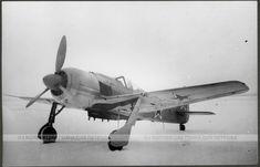 Russian captured Focke Wulf 190