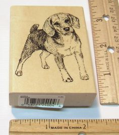 BEAGLE BY STAMP GALLERY SCENT HUNTER DOGS Rubber Stamp   #STAMPGALLERY #regular