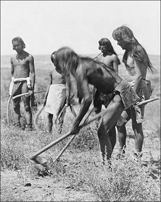Hopi Indians Farming on the Reservation Indian Pictures: American Indian Reservations Photos and Images