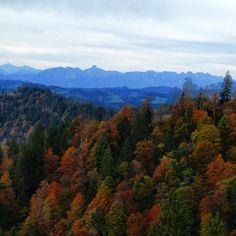 #napf #emmental #schweiz #bern #switzerland #landscape #landscape_lovers #igerssuisse #stockhorn #autunum #herbst #trees #forrest #colorshow #igersnature #igers #igersswitzerland #naturelovers #natureandculture #naturearts #sky #clouds #instanaturelovers #mountain_love #mountains - @nigy84