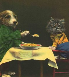 Harry Whittier Frees. Puppy & Kitty having lunch. Sweet!