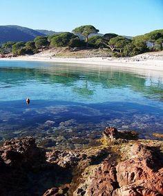 Plage de Palombaggia, Corsica. #france #wanderlust #corsica www.vainpursuits.com