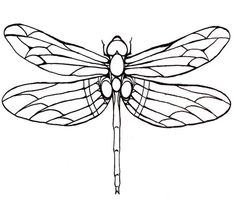 dragonfly line drawings uk - Google Search
