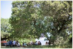 photo from Easy Breezy Picnic Wedding at | The Budget Savvy Bride  Picnic wedding at a state park--simple and casual!