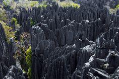 Die Tsingy von Bemaraha im Nationalpark Bemaraha sind ein einmaliges Naturereignis im Westen Madagaskars. Bis zu 40 Meter ragen diese spitzen, messerscharfen Kalksteinnadeln in die Höhe und bilden skurrile Skulpturen. Dazwischen finden sich einzigartige Pflanzen und Tiere, Schluchten, Höhlen und Bäche. Zahlreiche verschiedene Wanderwege führen durch dieses weitläufige Gebiet und laden zu Entdeckungstouren dieser einmaligen Wunderwelt in Madagaskar ein. Holiday Travel, Madagascar, Walking Routes, Vacation Places, National Forest, Sculptures