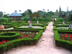 Visit The Bermuda Botanical Gardens .Pin provided by Elbow Beach Cycles http://www.elbowbeachcycles.com