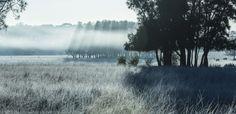 Hunter Valley, Australia #green #winter #cold #autralia #photography