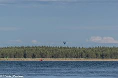 Hang-gliding by Yyteri beach