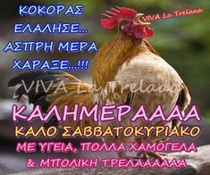 Αποθήκευση στο καλημερα Greek Quotes, Good Morning, Decor, Buen Dia, Decoration, Bonjour, Decorating, Good Morning Wishes, Deco