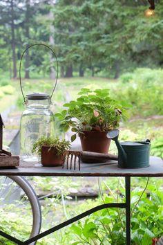 ロングパリッシュの画像 | Nora レポート ~ワンランク上の庭をめざして~