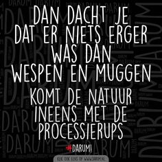 Funny Facts, Funny Quotes, Dutch Quotes, Can't Stop Laughing, Shut Up, Logo Nasa, Spelling, Quote Of The Day, Texts