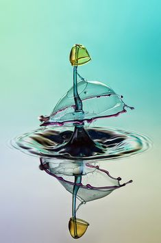Water drop collisions by Markus Reugels