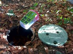 One of my favorite things! Geocaching - Found a container in a container like this at the beach under a bush!