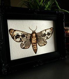#Pyrography #Skull #Moth on watercolour paper. door TimberleePyrography
