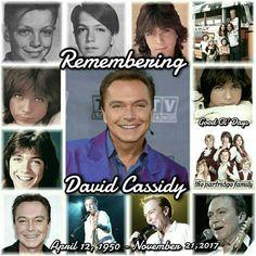 70s Actors, Actors & Actresses, Celebrities Then And Now, Famous Celebrities, Only Teen, Celebrity Siblings, Shirley Jones, Partridge Family, David Cassidy