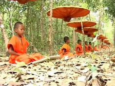 The chant of Metta - YouTube