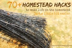 70+ Homestead Hacks: Tips to Make Homesteading Easier | The Prairie Homestead