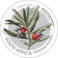 South Africa, 20122. National Tree.  Designed by Lize-Marie Dreyer