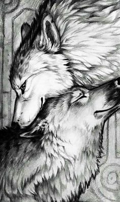 Realistic Wolf Love Drawing