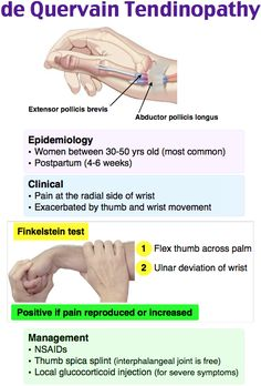 Rosh Review Hand Therapy, Massage Therapy, Physical Therapy, Physical Science, Family Nurse Practitioner, Musculoskeletal System, Nursing Mnemonics, Human Anatomy And Physiology, Emergency Medicine