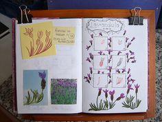 Doodle 33 | Flickr - Photo Sharing!