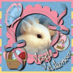 Veselé Velikonoce Obrázky Happy Easter, Teddy Bear, Cards, Scrapbooking, Home Decor, Happy Easter Day, Homemade Home Decor, Teddybear, Interior Design