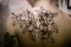 before color - Dogwood with honeybees. | Alice Carrier with Anatomy Tattoo - Portland, OR.