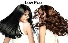 Feirinha Chic : Resumão Low Poo para quem está começando