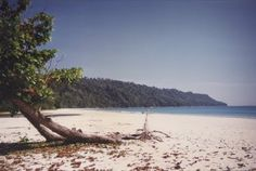 Havelock island un'isola stupenda delle Andamane nell'Oceano Indiano Panoramio - Photos by Vito Simi de Burgis