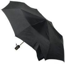 Totes Titanium Auto-Open/Close Umbrella  From Totes