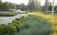 GreenWorks worked the City of Oregon City and OBEC Consulting Engineers in developing planting and irrigation design for the following OR213 Redlands Road Crossing, providing planting and irrigation design services for the Jughandle Project.