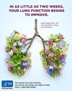 The sooner you quit smoking, the sooner your body can begin to heal. You can quit smoking. For free help: 1-800-QUIT-NOW. #quitsmoking
