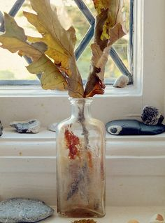 textile artist photography and mixed media - Carolyn Saxby Textile Art St Ives Cornwall Carolyn Saxby, St Ives Cornwall, Beast From The East, Pretty Beach, Holly Leaf, Art Archive, How To Make Tea, Textile Artists