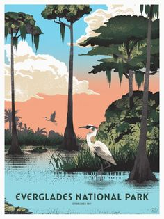 Two Arms Inc - Everglades National Park