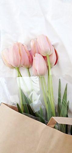 ༺You Got Flowers༺