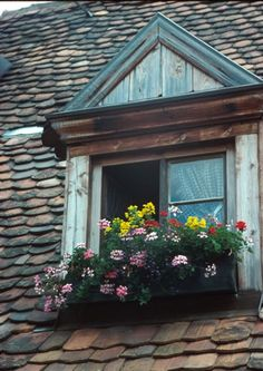 Yes, a windowbox off our bedroom dormer!  I also like the trim work across the top of this dormer